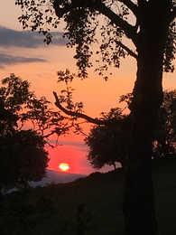 Sunset in Wernog Wood