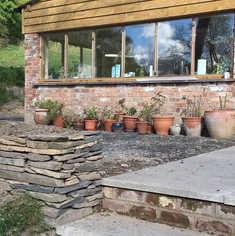 geranium pots