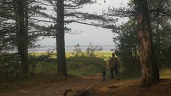 Aus dem Wernerwald direkt an den Strand