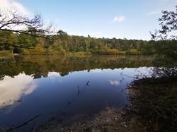 Finkenmoorsee