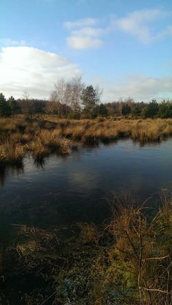 Je nach Regenfällen bilden sich hier kleine Seen