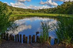 Der Finkenmoorsee - ein Foto von Matthias Buczur
