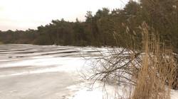Finkenmoorsee im Winter