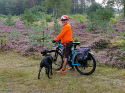 Wir lieben es, in der Küstenheide mit unseren Hunden Radtouren zu unternehmen
