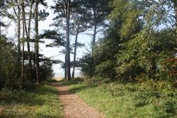Vom Finkenmoorsee direkt an den Strand
