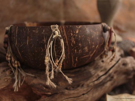 snake medicine bowl bones landscape.jpg