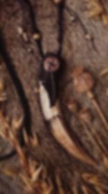 courage Frey boar tusk close.jpg