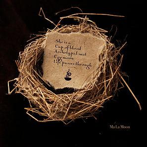 Ma La Moon - Archetypal nest.jpg