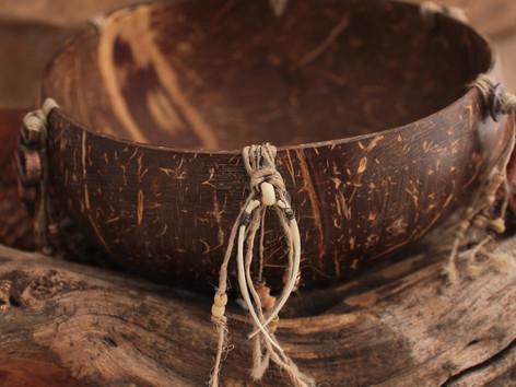 snake medicine bowl bones 1 insta.jpg