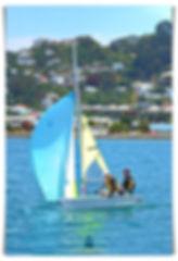 Feva Kite up.jpg