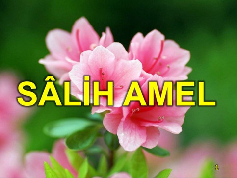 Amel-i Sâlih