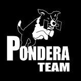 www-Logo-Pondera-team-e1448889421376.jpg