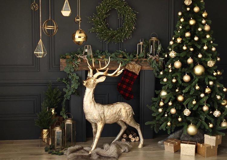 Christmas Mini Sessions December 5, 2020