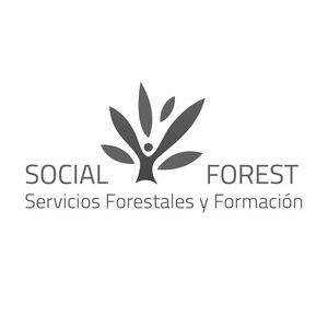 SocialForest