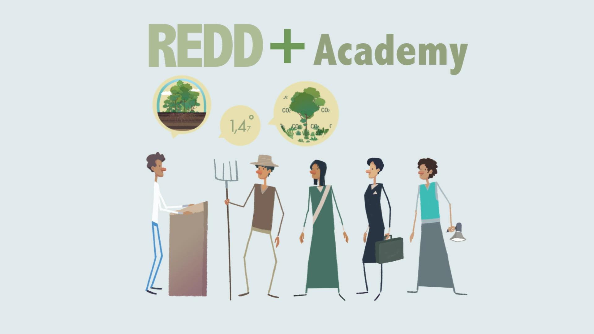 REDD+Academy stakeholders