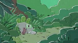 Tardigrades are in diverse biomes