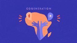 Cogeneration for Africa!