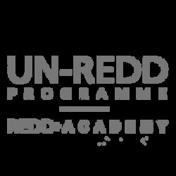 UN-REDD | REDD+Academy