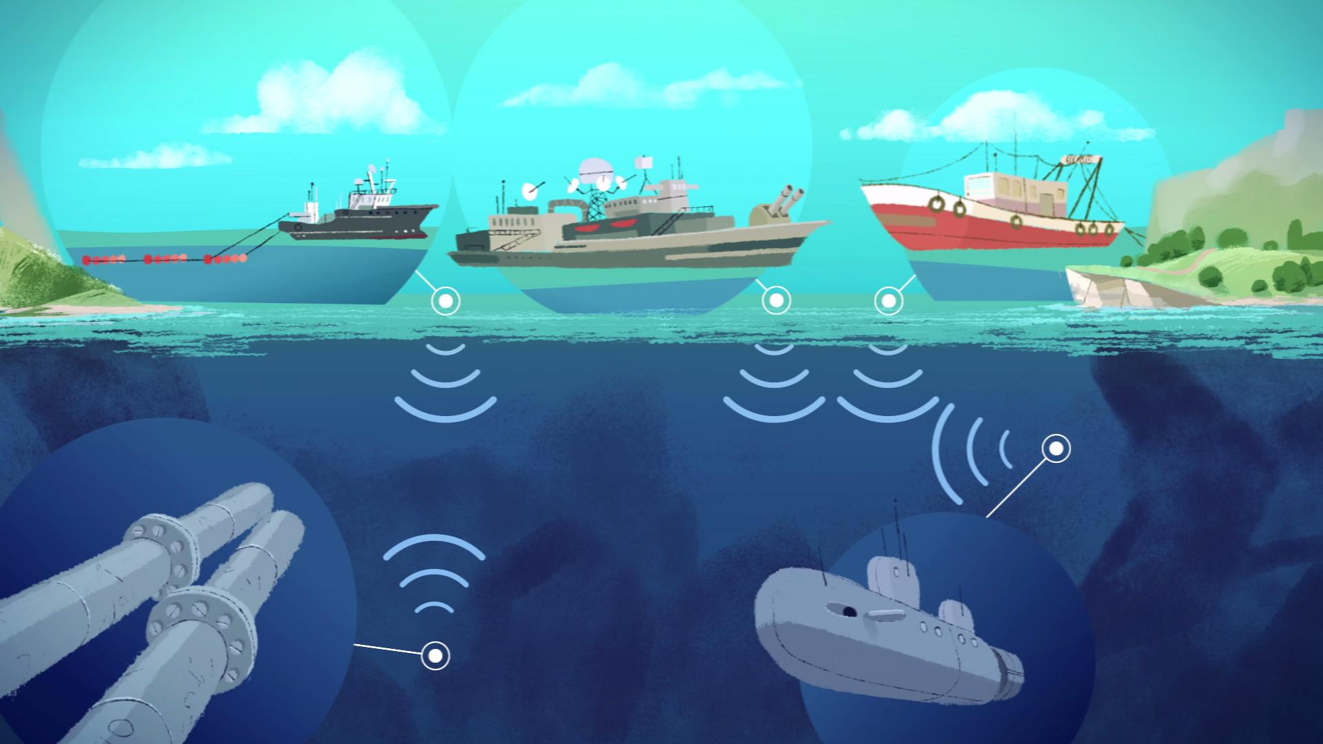 Ocean noise & whales