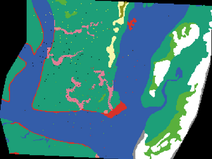 Assessing Threats to Diamondback Terrapins in a Coastal Carolina Salt Marsh.