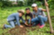 One Tree Planted-27.jpg