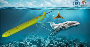 Biomimetic improvement for the hydrodynamic performance of the enduring underwater glider