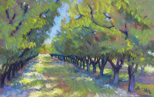 Lights in the Trees  24 X 16 Pastel
