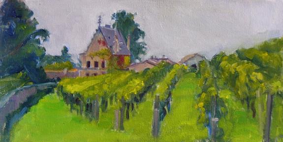 St Emilion Vineyards 15 X 7.5
