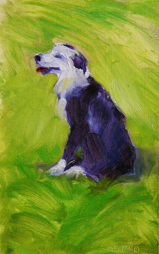 Happiness is a Warm Sheepdog   6 X 8 Oil