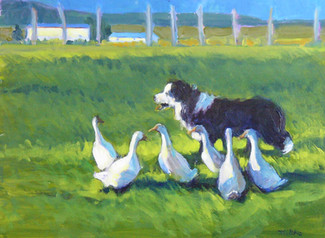 Pete and His Ducks 16 X 12 Oil