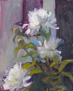 Whalin's Peonies 8 X 10 Oil