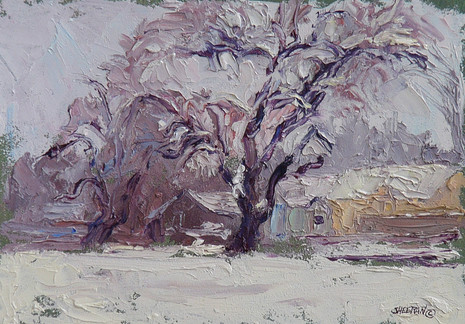 Blanketed 9.5 x 6.5 oil