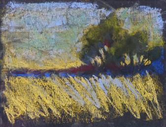 Western Trees Pastel