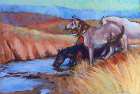 The Lookout 24 X 18 Pastel