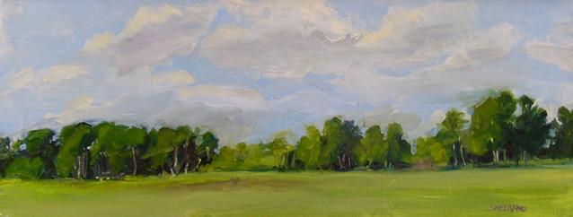 Peaceful Fields Westcliffe 30 X 12 Oil