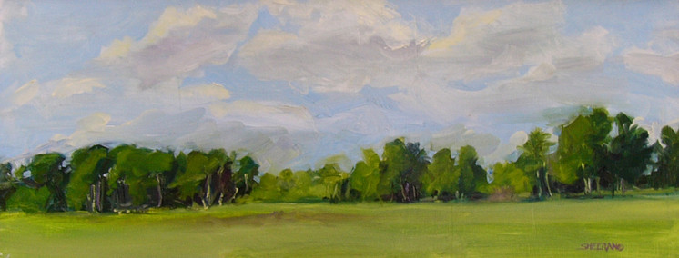 Peaceful Fields Westcliffe 30 X 12 Oil