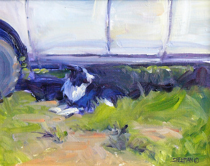 Catching a Little Shade 10 x 8 Oil
