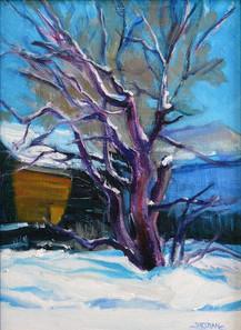 Winter Trees 9th Street 9 x 12 Oil