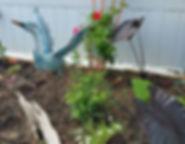 Blue heron flower bed_edited.jpg