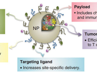 Heated nanoparticles trigger immune systems deactivated by cancer