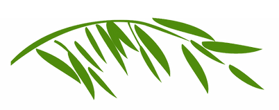 leaf-green.png