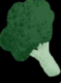 Broccoli1.png