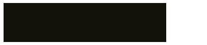 Super-SOCO-Logo-wide-403px.png