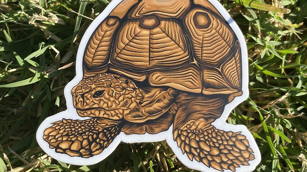 Damia Sticker
