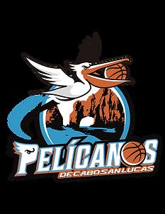 Pelicanos los cabos cibapac