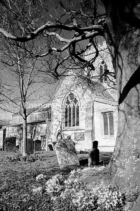 Snowdrops & Churches 06