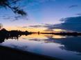 twilight bunbury pic.jpg