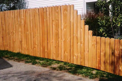fences_Page_05