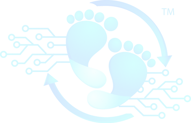 Digital Marting and website design logo for footprint marketing solutionslogo