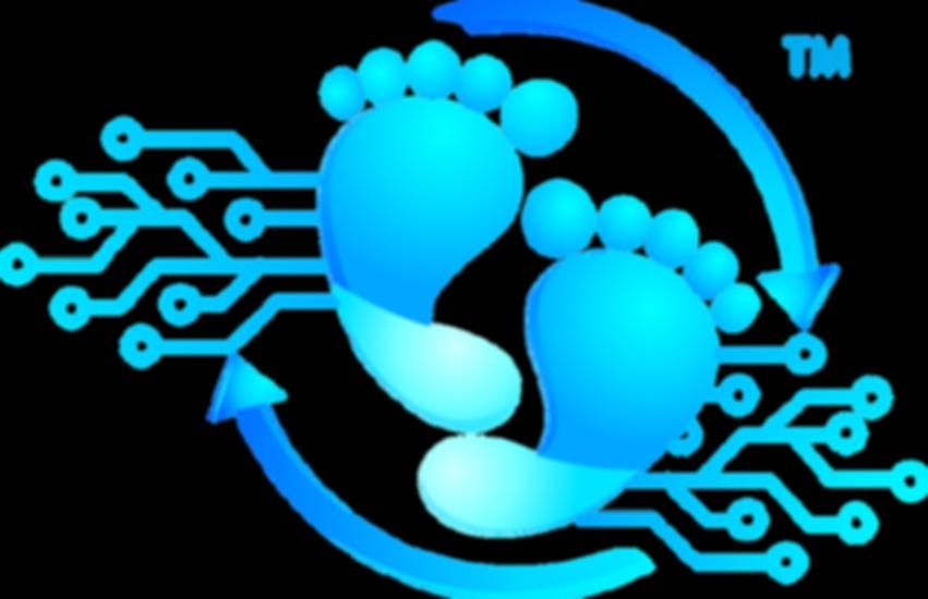 Footprint marketing and advertsing digital solutions logo